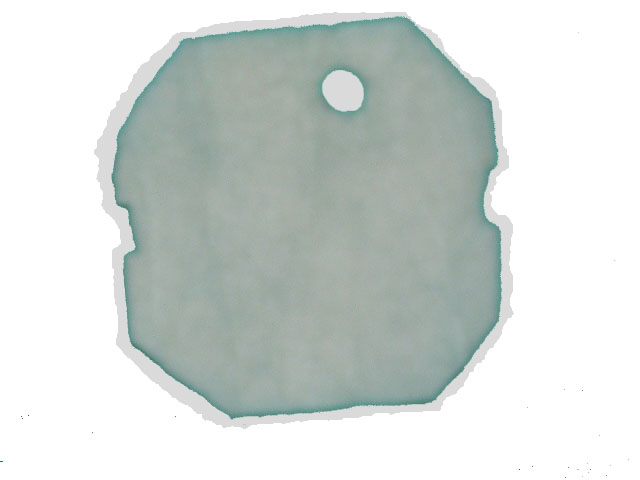 Via Aqua 650, 750 Replacement Poly Pad, Generic