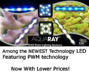 AquaRay LED Lighting, ONLY Full Service Online Source