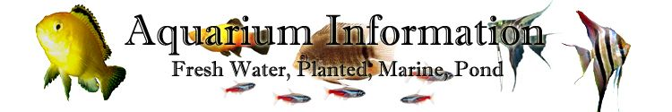 Aquarium and pond information, articles, help, answers, resources