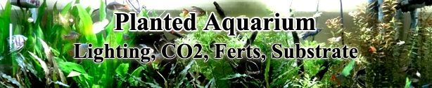 Aquarium Plants; substrates, care, information, fertilizers, CO2