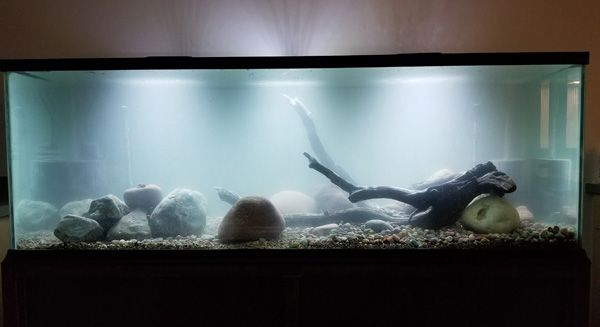 AAP-Aqueon Freshwater Aquarium LED Clip-On Light on tank