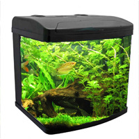 Bio cube aquarium, wet dry filter, lights