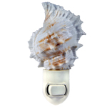 Bursa seashell Night light
