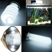 SHO Super High Output and Standard Compact Fluorescent Lights, Lamps