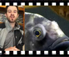 Columnaris in Fish Video