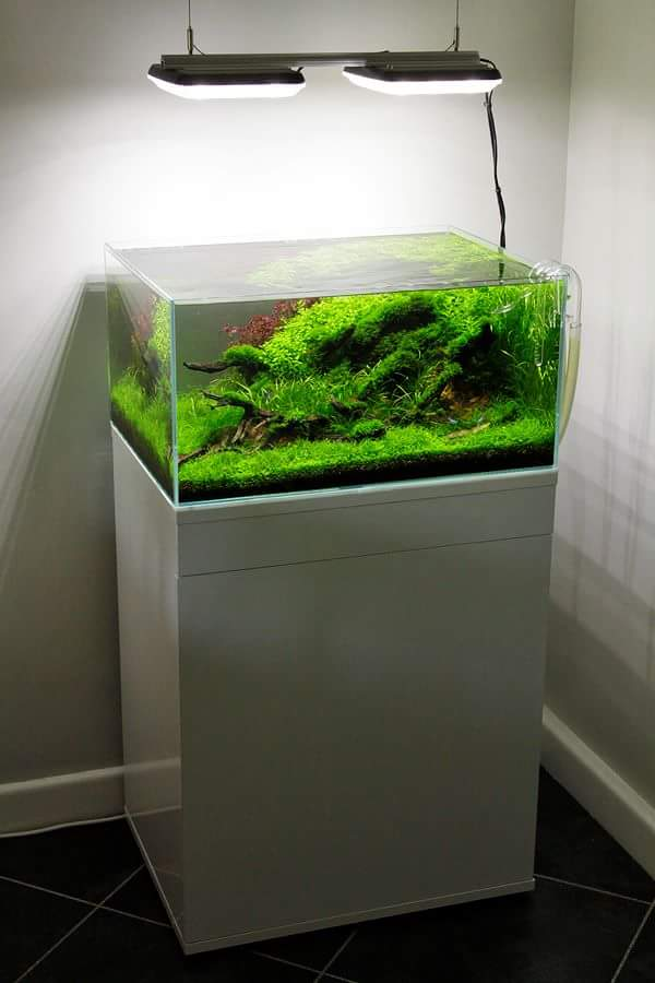 Led Aquarium Light Reef Amp Planted Lighting Aquaray