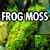 Pillow Moss Favicon, Aquarium Pond Treatments
