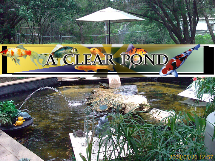 Pond care information clear garden ponds filtration for Keeping ponds clean without filter