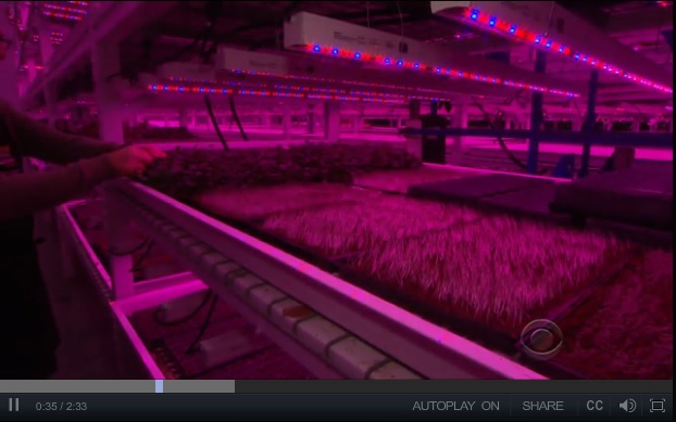 Vertical farms: Making nature better