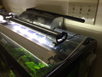Aquarium LED Light Mounting with Foam Pipe Insulation