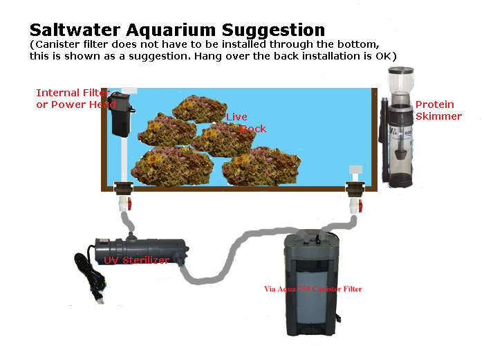 Saltwater fish tank filter setup basic saltwater for Pond filter setup