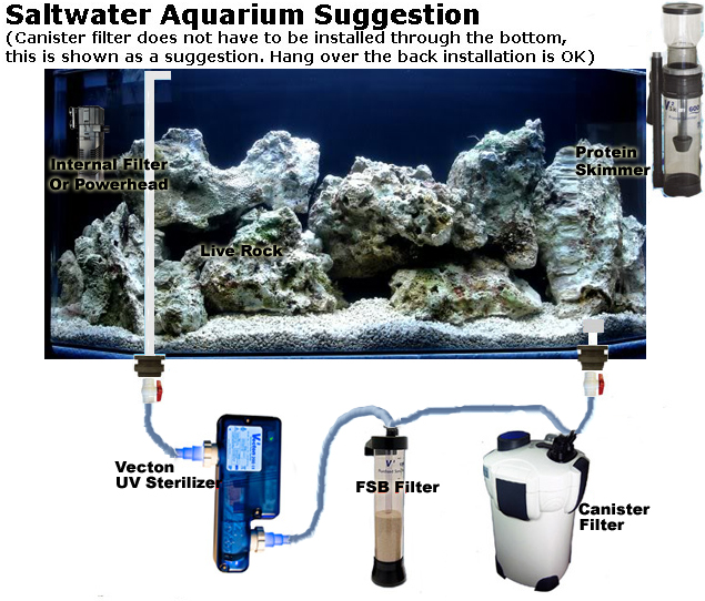 Basic Saltwater Aquarium Set Up; Marine Tank Diagrams ...