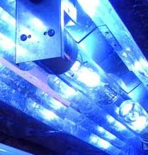 metal halide, MH aquarium light, 20K