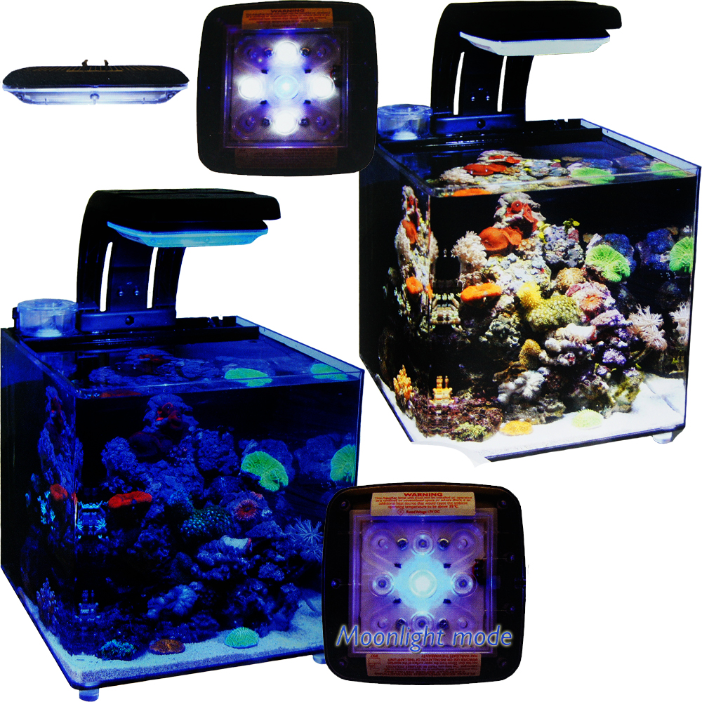 TMC Micro Habitat 8 Gallon Aquarium for Nano Reef  sc 1 st  American Aquarium Products : nano led lighting - azcodes.com