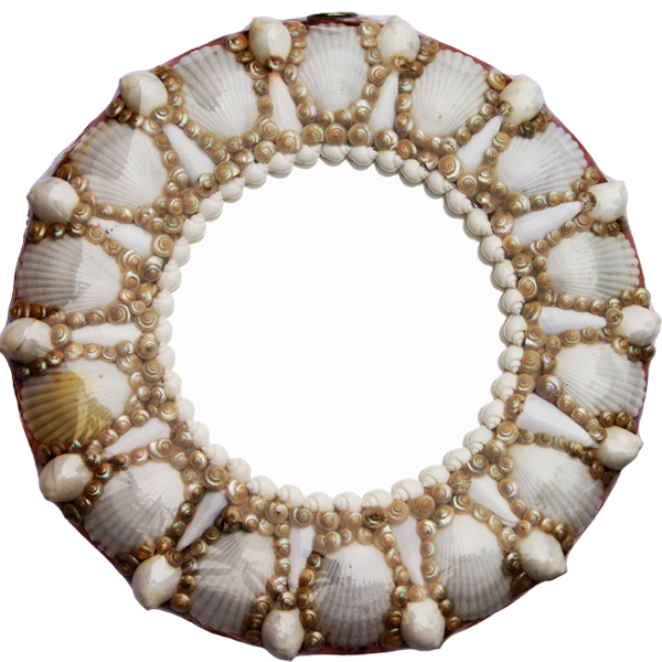 shell mirror oval and round mirrors seashell collectibles