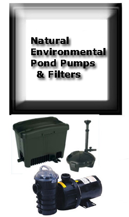 POND PUMPS/FILTERS;