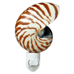 Natural Nautilus seashell Night light