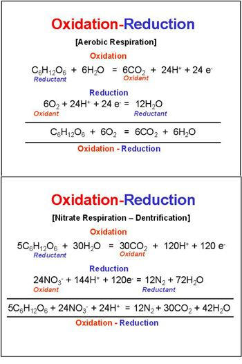 oxidation reduction lab and physical and Physical sciences rating and stats 20  documents similar to expt 2 oxidation reduction reactions  chemistry lab assessment- oxidation & reduction.