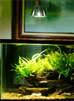 PAR LED Aquarium, Hydroponics Light