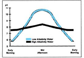 Pond Alkalinity Graph