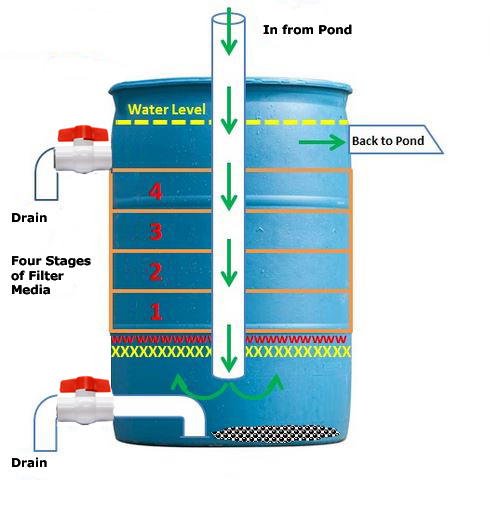 Pond filter design pond free engine image for user for Pond filtration system diagram
