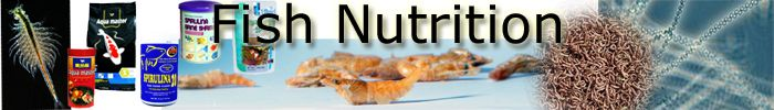 Aquarium Fish Food Nutrition, ingredients