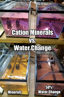Redox mineral water change