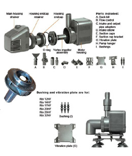 Rio HF Water Pumps Parts Diagram