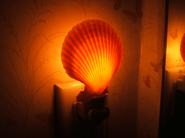 Image Gallery Night Light