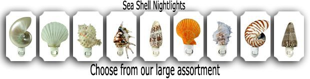 SeaShell Night Light Selection