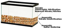Nitrification, De-Nitrification, Sulfur Reduction in Aquarium Substrate