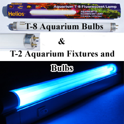 Aquarium Marine Reef, Freshwater, Home Plant, T2 and T5 Lights, Fixtures