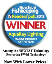 Practical fishkeeping, marine product of the year