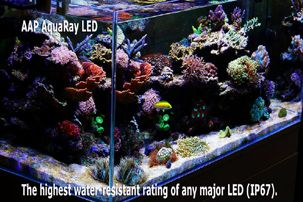 AquaRay LED Light, The highest water-resistant rating of any major marine reef LED