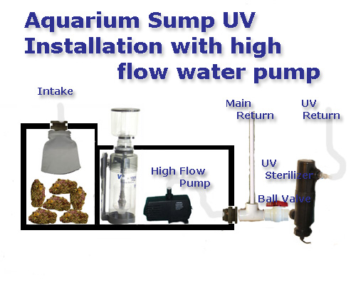 Basic Saltwater Aquarium Set Up Marine Tank Diagrams Equipment Suggestions