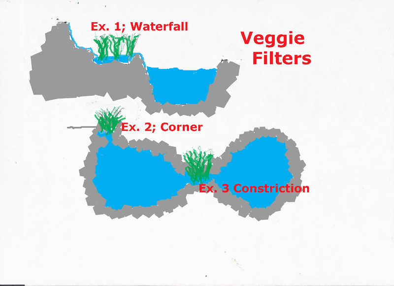Project aro pond page 6 arofanatics fish talk forums for Pond veggie filter