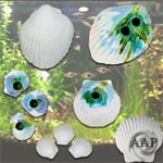 Aquarium Wonder Shells from AAP