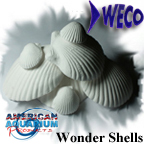 Authorized seller of AAP Wonder Shell