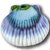 Wonder Shell Favicon, Aquarium Pond Treatments